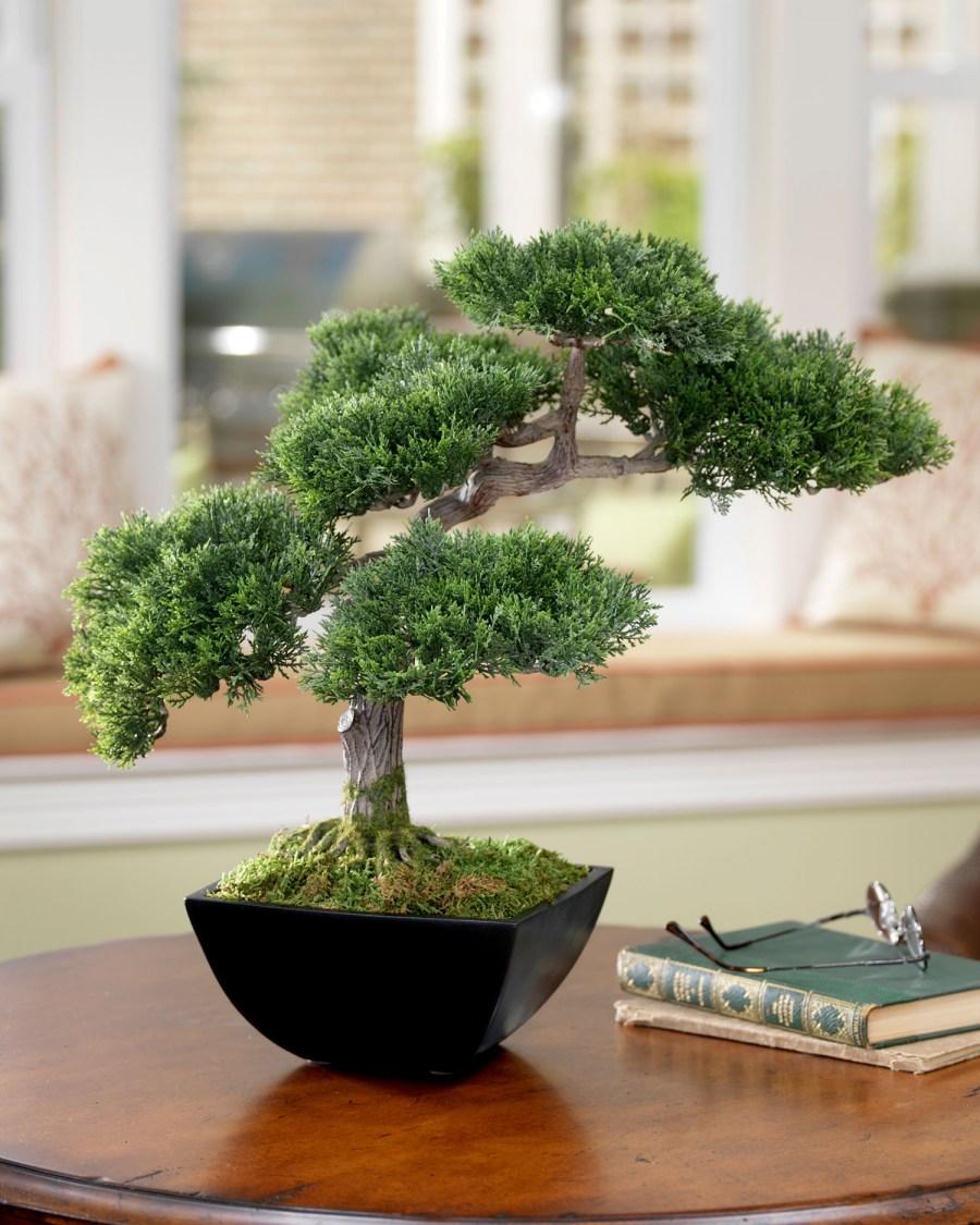 Японское дерево своими руками фото 222