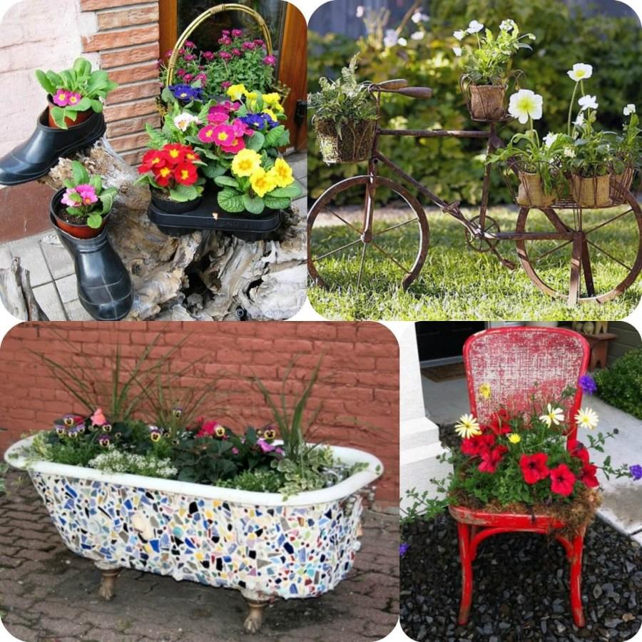Красивые домашние цветки