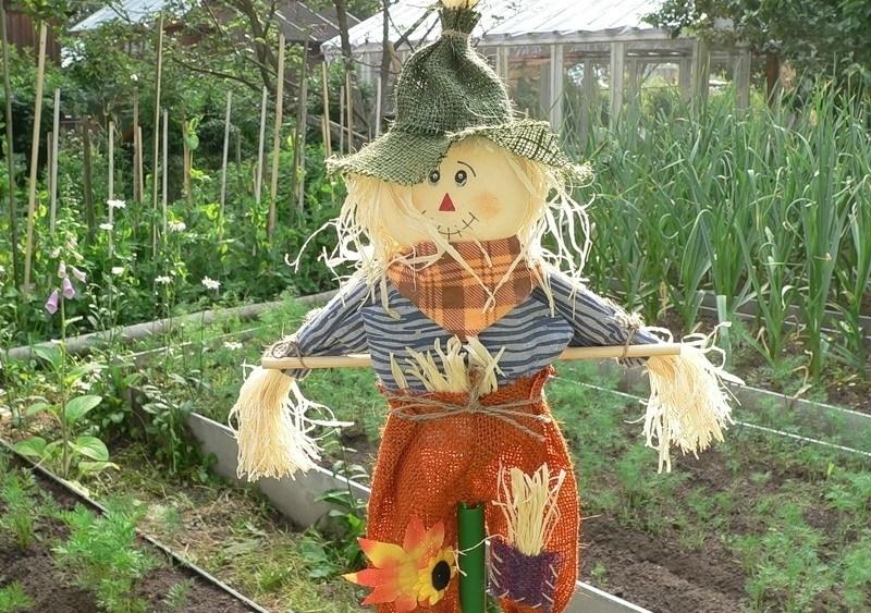 Сделать чучело в сад