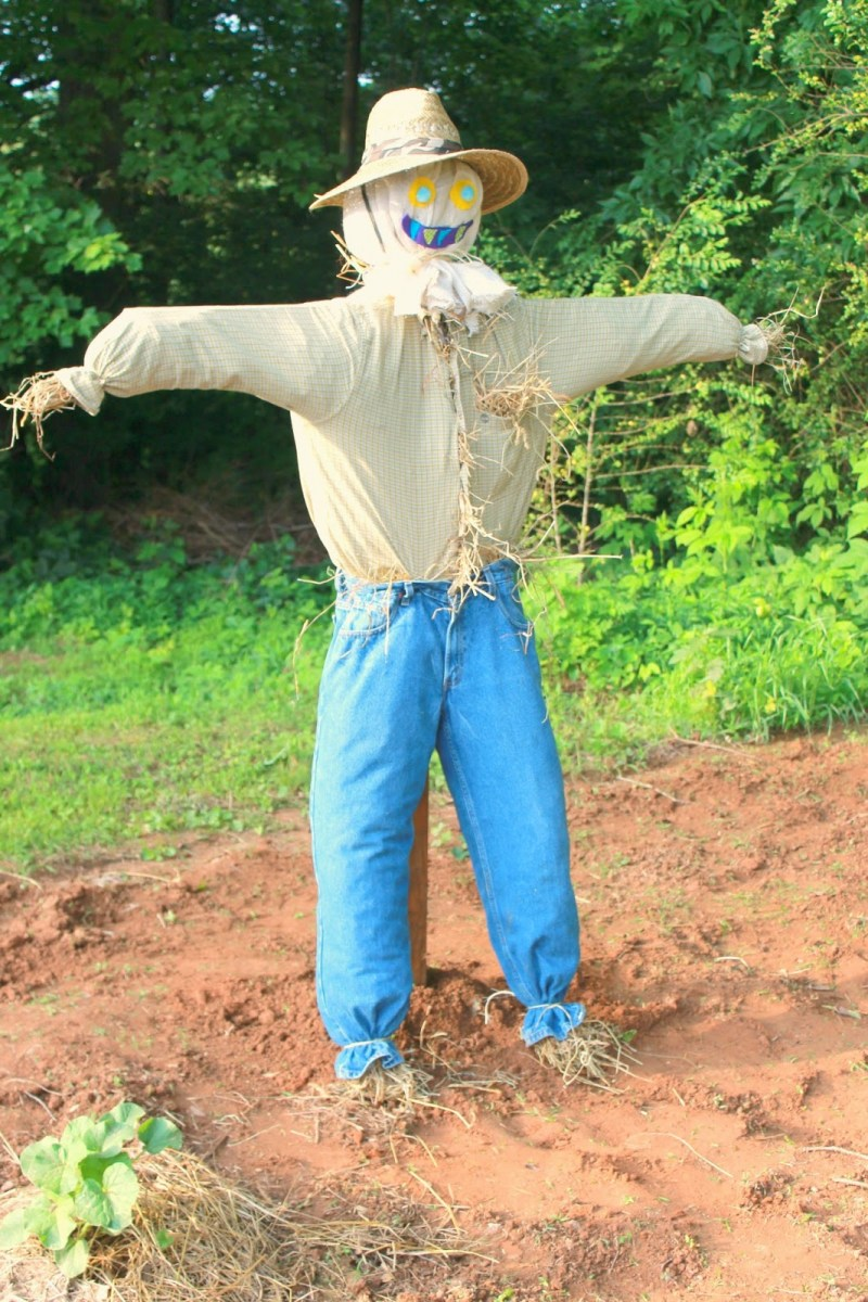 Пугало для огорода своими руками пошаговое фото 75