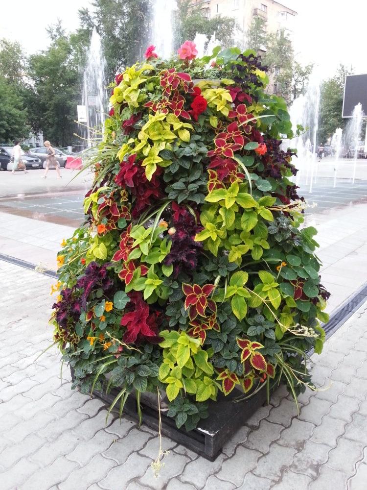 идеи создания красивых цветников своими руками