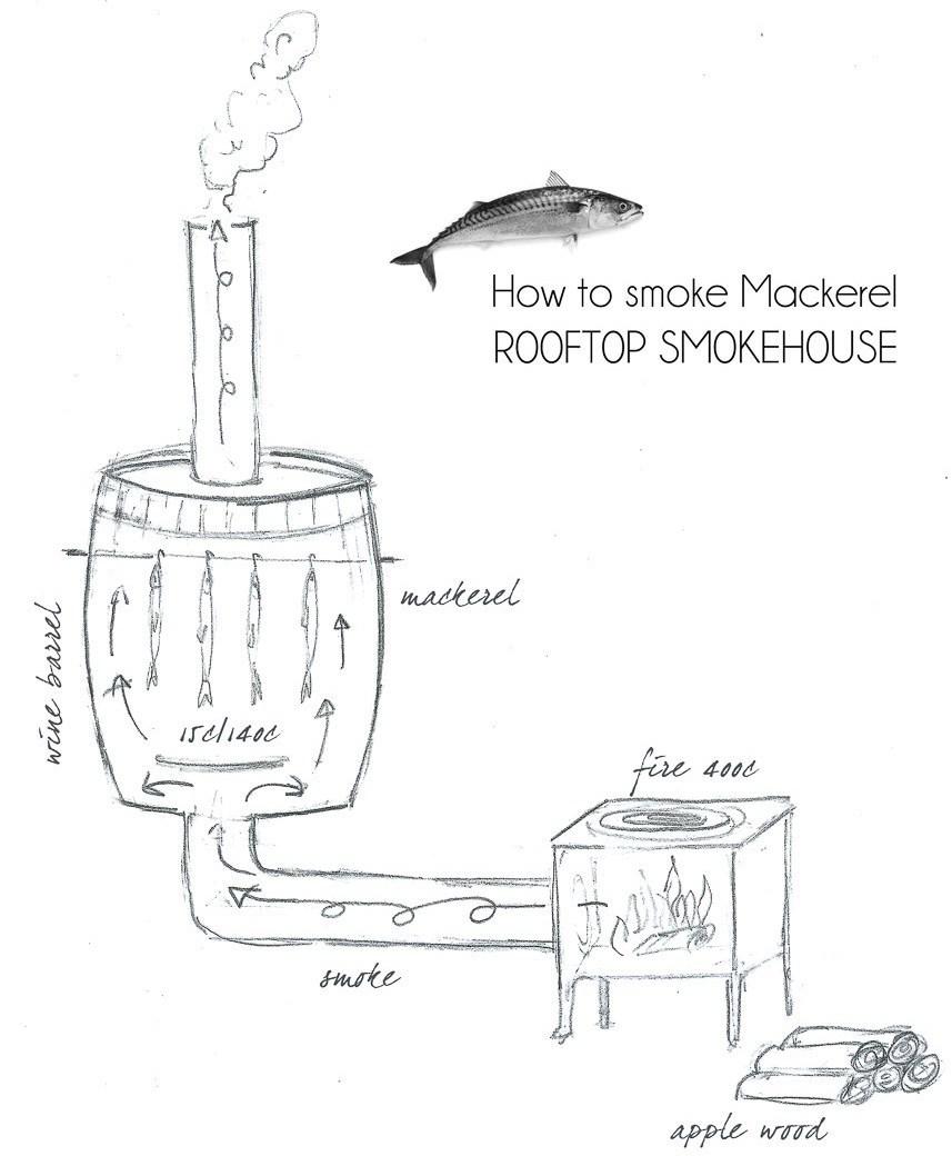 Как сажать грибы шампиньоны 95