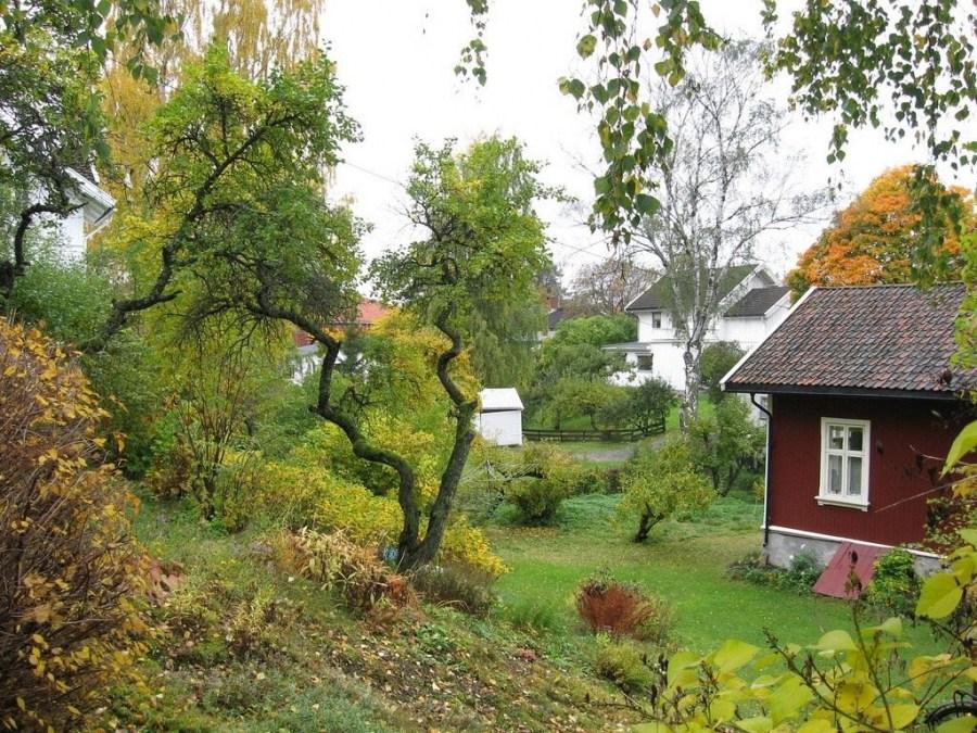 уход за садом осенью